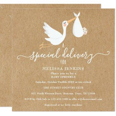 A Special Delivery Stork Baby Shower/Sprinkle Invitation