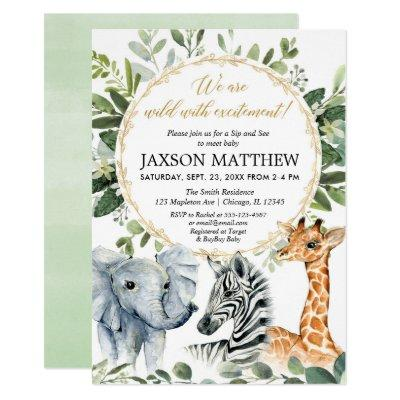 Meet And Greet Baby Shower Invitations Baby Shower Invitations